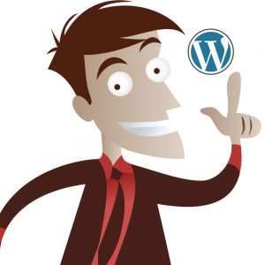 Tampa WordPress Designer
