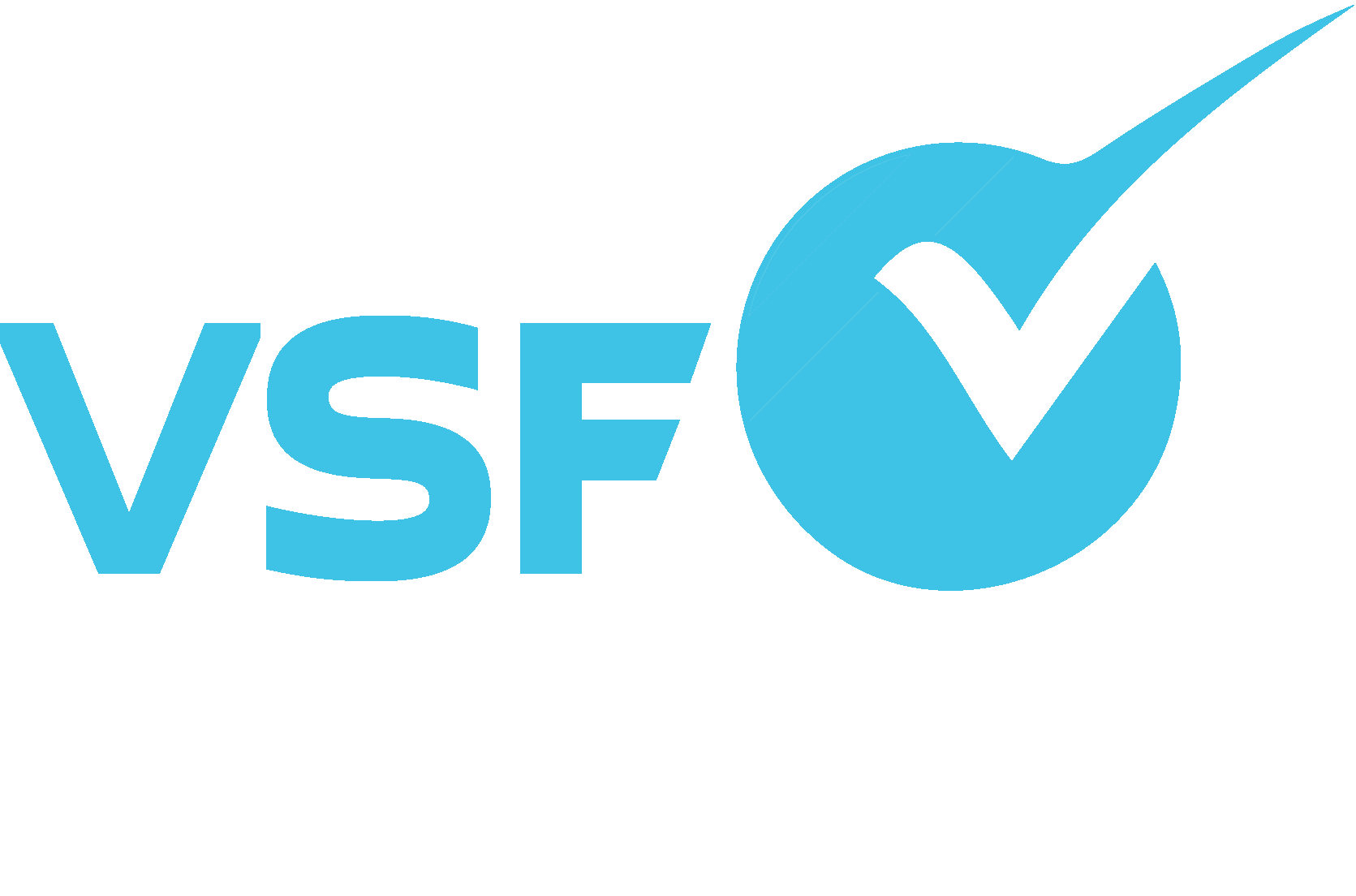 VSF is a Tampa website designer, Tampa Online Marketing, Tampa SEO Agency, and a Tampa Social Media Agency